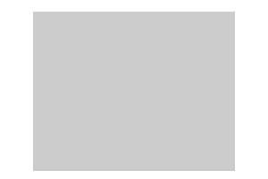 Дом, площадью 1065 кв.м