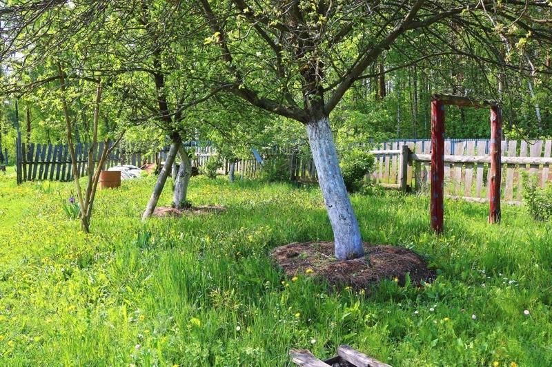 Продается дом, площадью 20.00 кв.м. Московская область, Егорьевский городской округ, деревня Кукшево